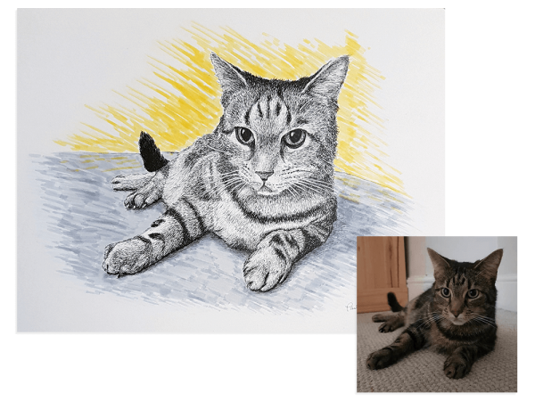 Cat ink portrait